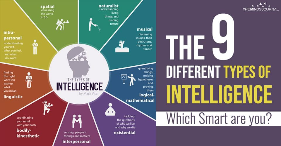 The 9 Different Types of Intelligence – Which Smart are you ?