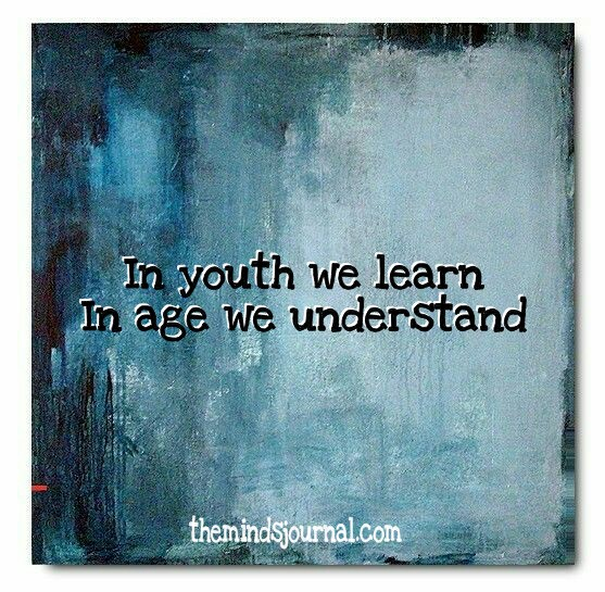 In youth we learn, in age we understand