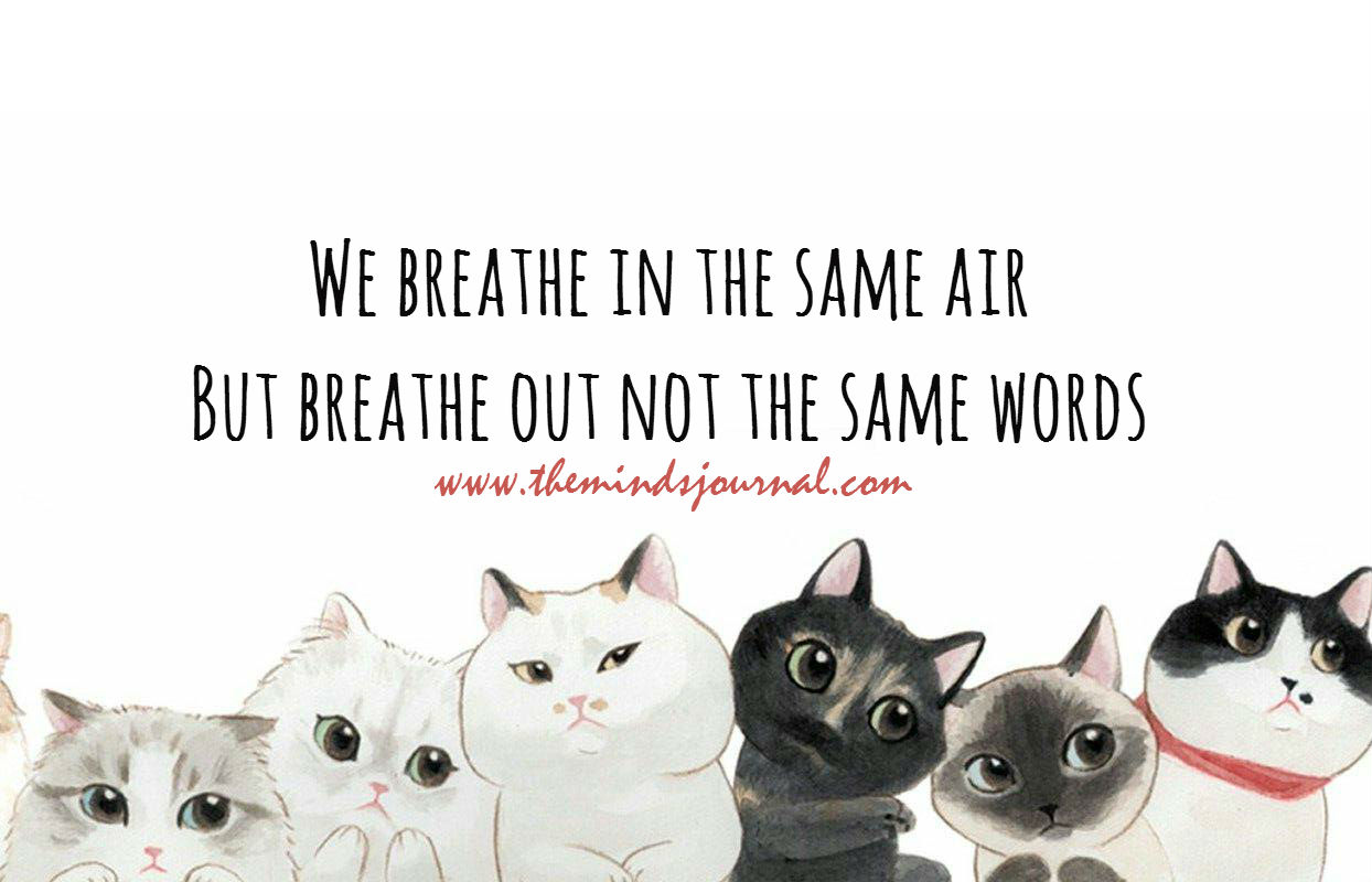 We breathe in the same air