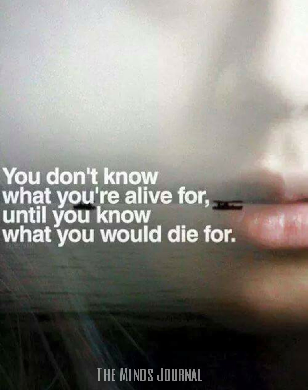 What would you die for ?