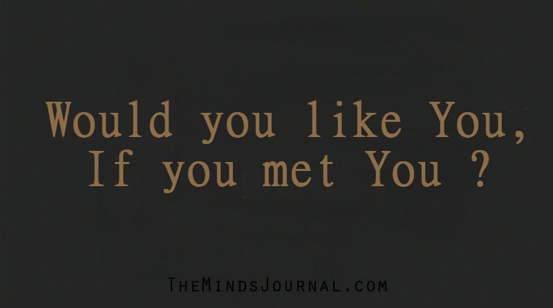 Would you like You, if you met You ?