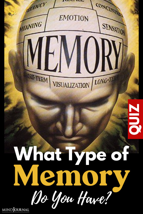 Type Memory Do You Have pin