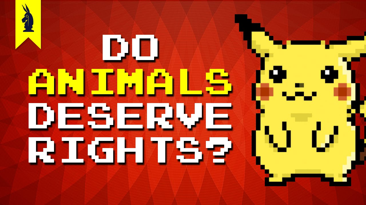Mind Video – Should Animals Have Human Rights ?