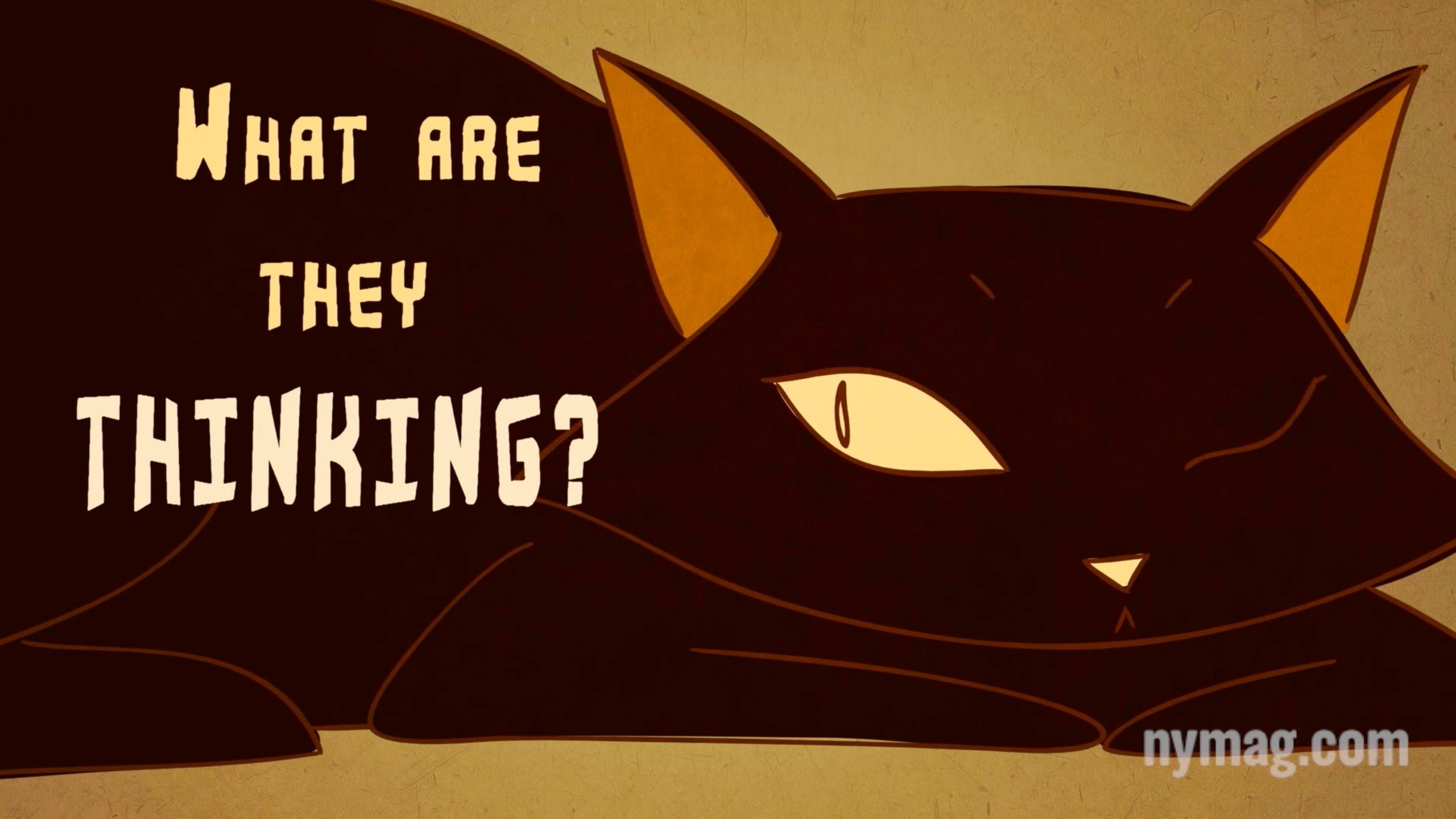 """Your Cat Is Talking To You: """"The Science of Us""""  – MIND VIDEO"""