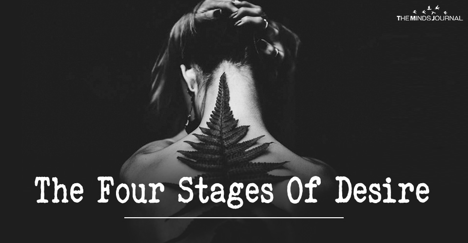 The Four Stages Of Desire : When Everything Boils Down To What You Seek