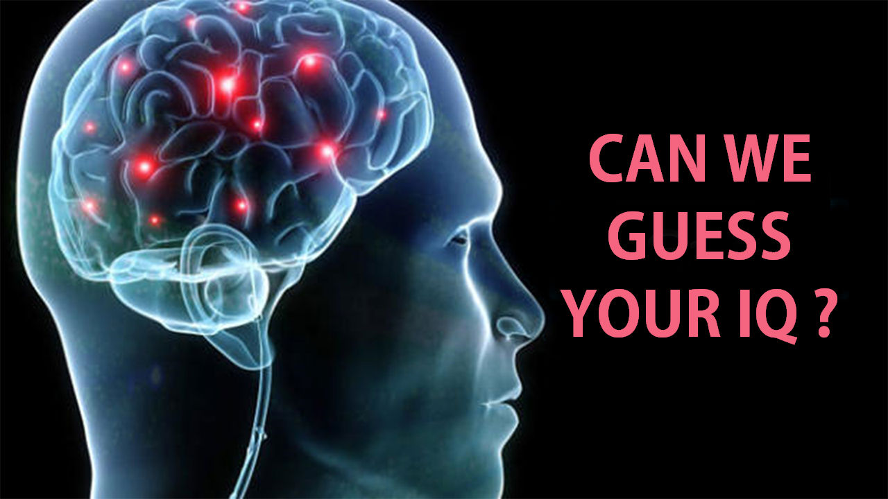 Can We Guess Your IQ? – MIND GAME