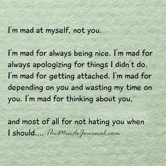 I am mad at myself, not you