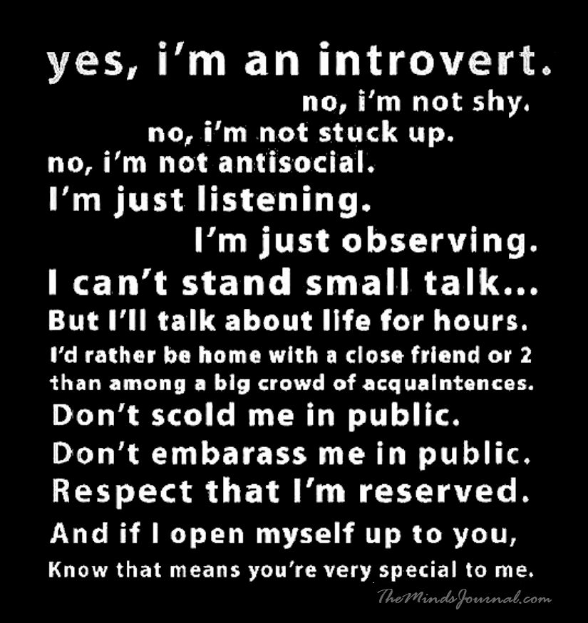 Yes, I am an Introvert