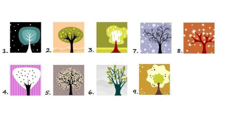 Fun Personality Test – Pick A Tree – MIND GAME