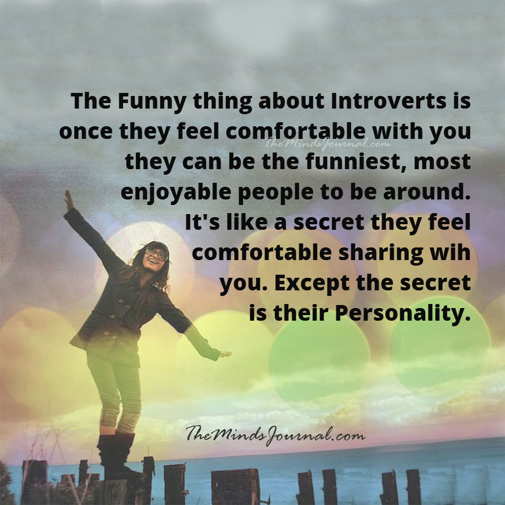 The funny thing about Introvert is