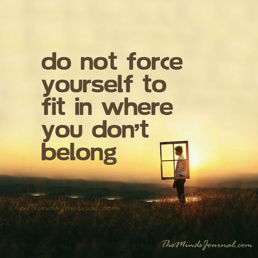 Do not force yourself to fit in