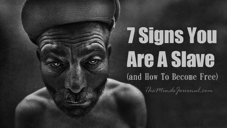 7 Signs You Are A Slave (And How To Become Free)