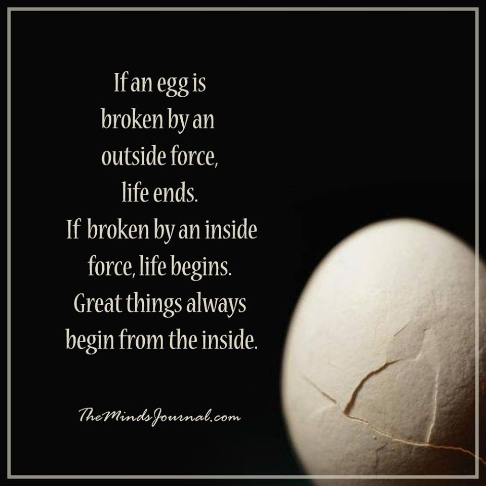 If an egg is broken by an outside force, life ends