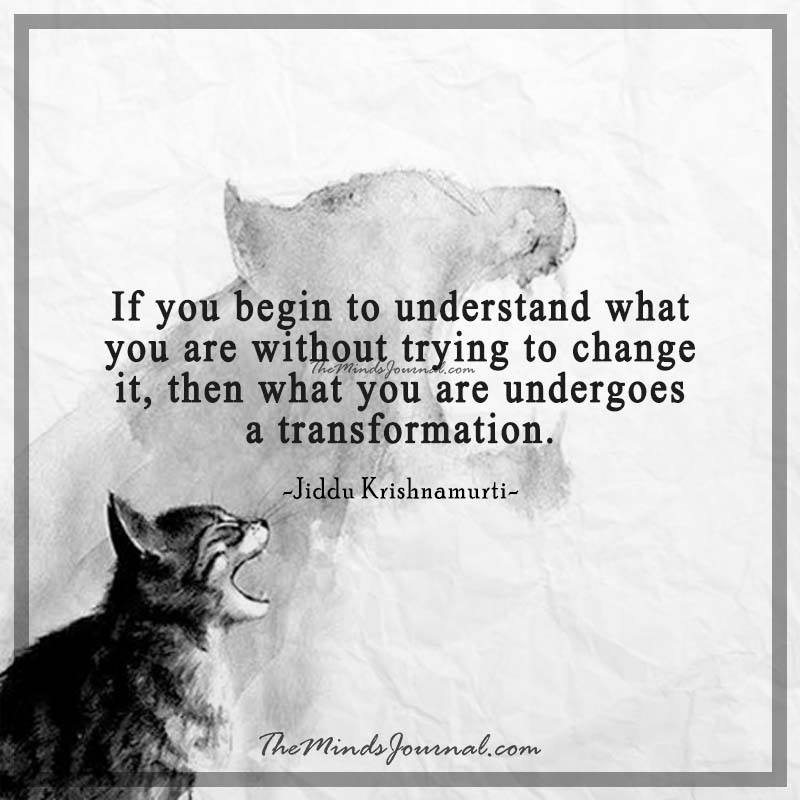 If you begin to understand what you are