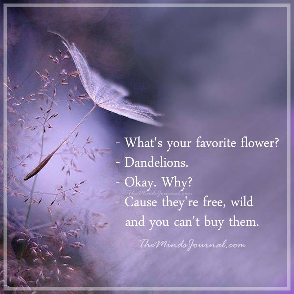 What's your favorite flower ?