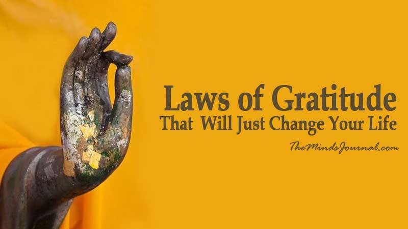 7 Laws of Gratitude That Will Change Your Life