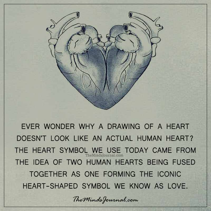 Ever wonder why a drawing of a heart