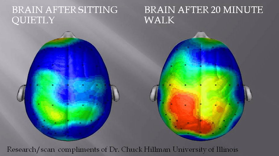 1474786636-8452-brain