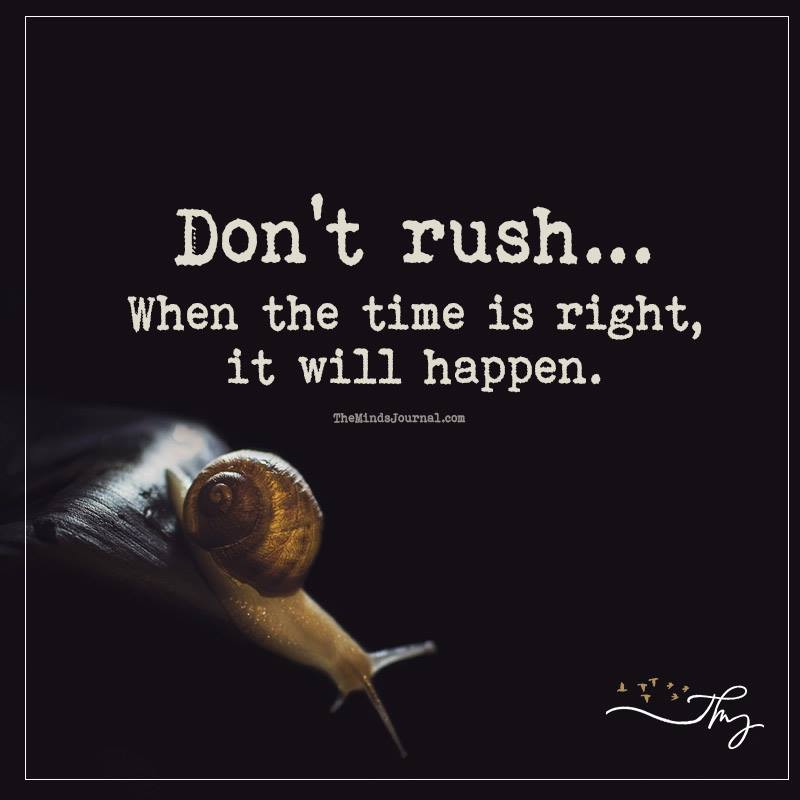 Don't rush.. when the time is right it will happen