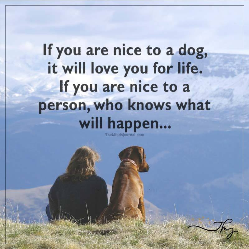 If you are nice to a dog