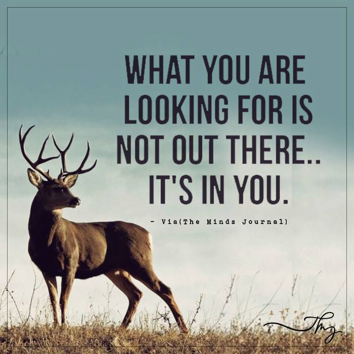 What you are looking for is not out there