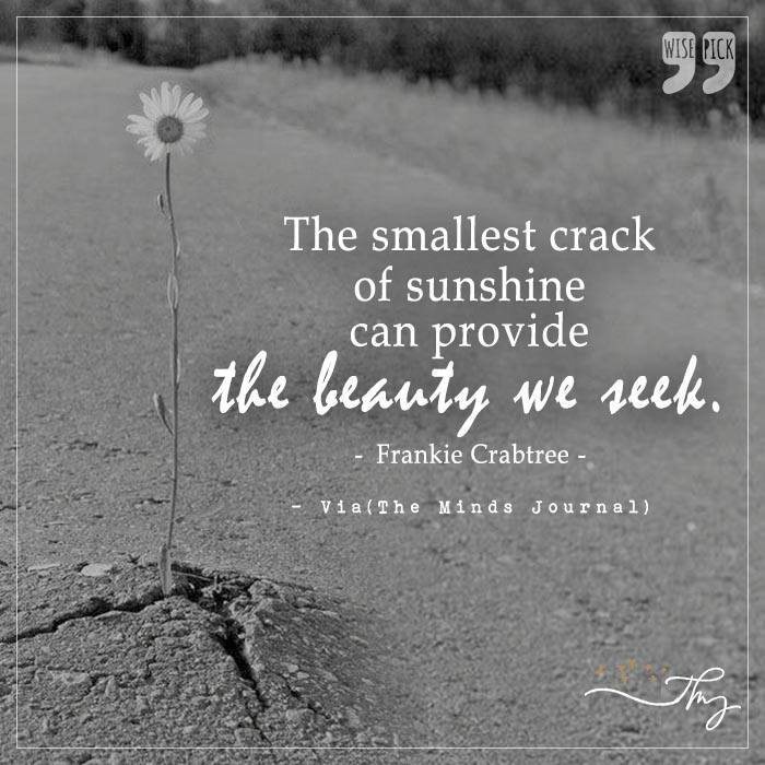 The smallest crack of sunshine