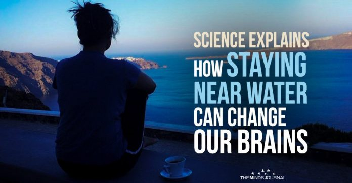 We all have A Blue Mind Science Explains How Staying Near Water Can Change Our Brains2