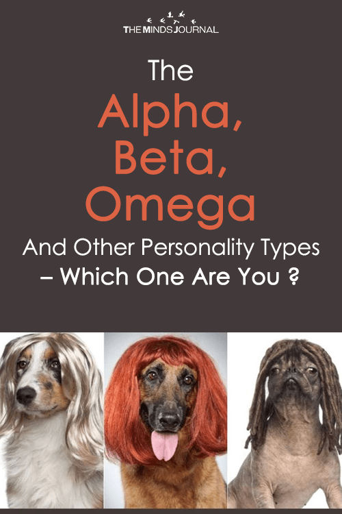 The Alpha, Beta, Omega and other Personality Types - Which one are you ?