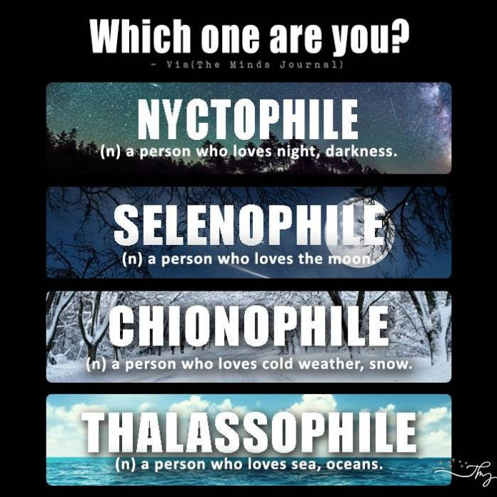 Which one are you ?