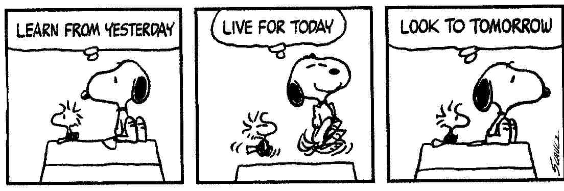Snoopy quote on live in the moment