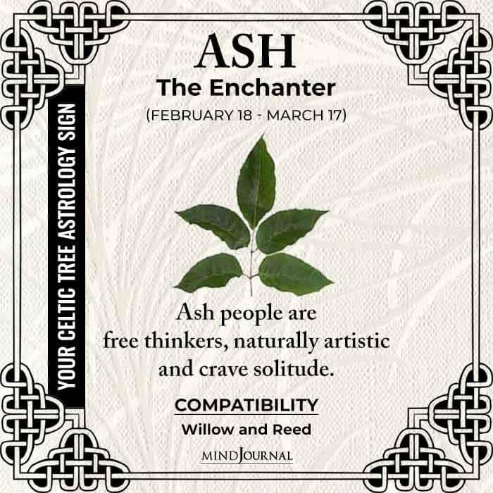 Ash The Enchanter