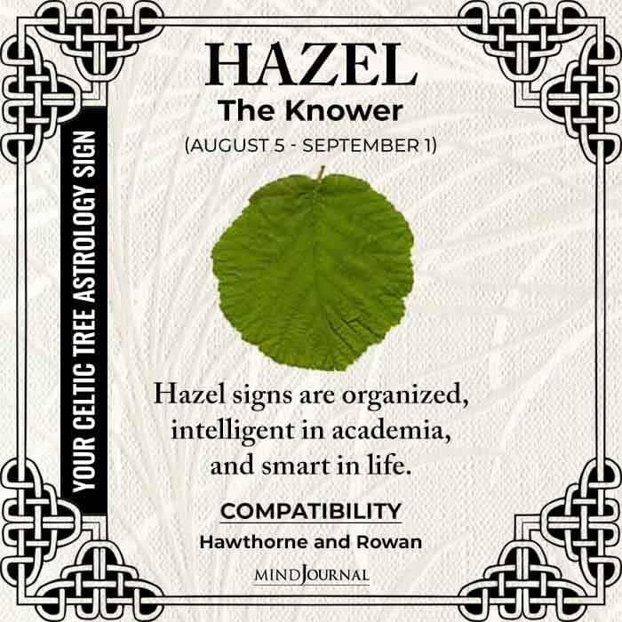 Hazel The Knower
