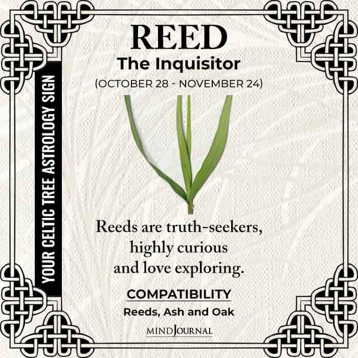 Reed The Inquisitor