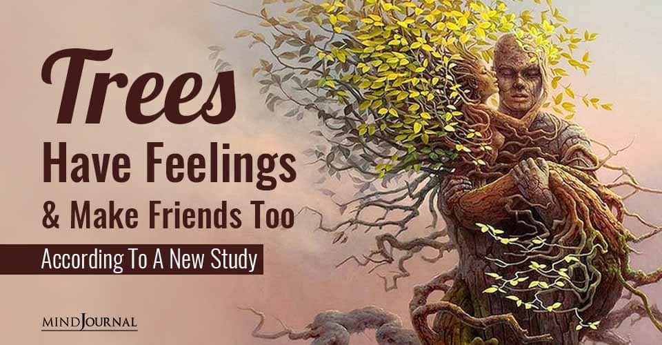 Trees Have Feelings and Make Friends Too According To A New Study