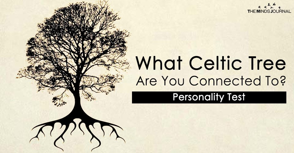 Which Celtic Tree Is Your Personality Most Connected To? Personality Quiz