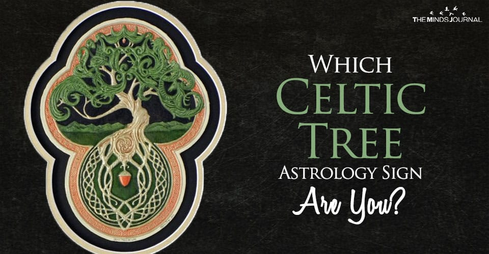 Which Celtic Tree Astrology Sign Are You?