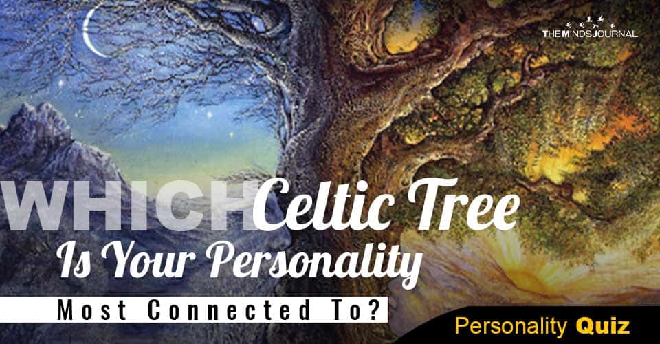 Which Celtic Tree Personality