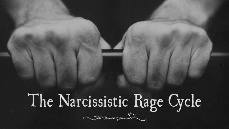 The Narcissistic Rage Cycle