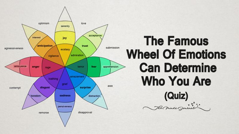 The Famous Wheel Of Emotions Can Determine Who You Are (Quiz)