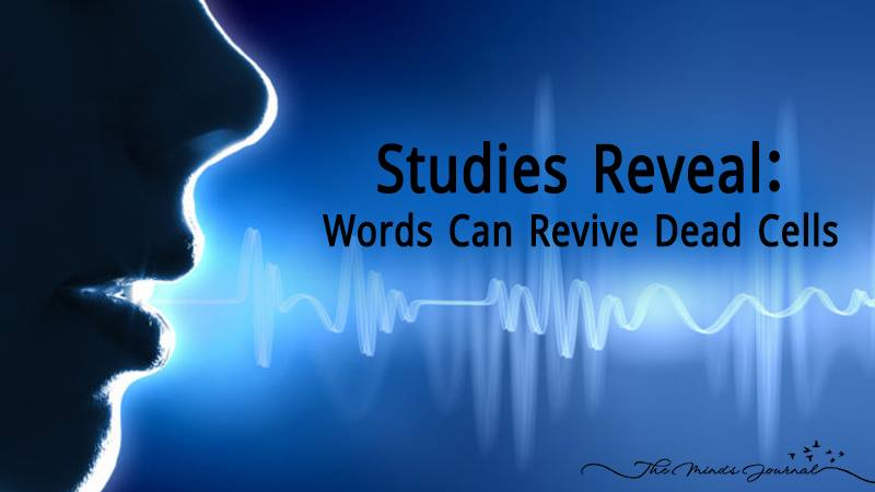 Studies Reveal: Words Can Revive Dead Cells