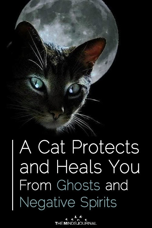 Cats Protect From Negative Spirits
