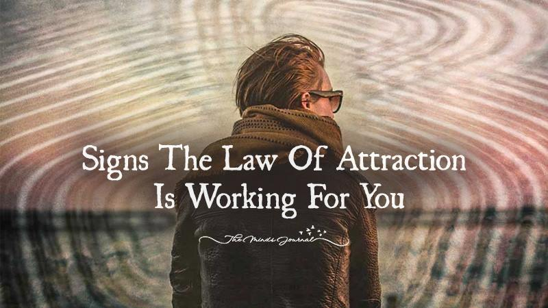 Signs the Law of Attraction Is Working For You