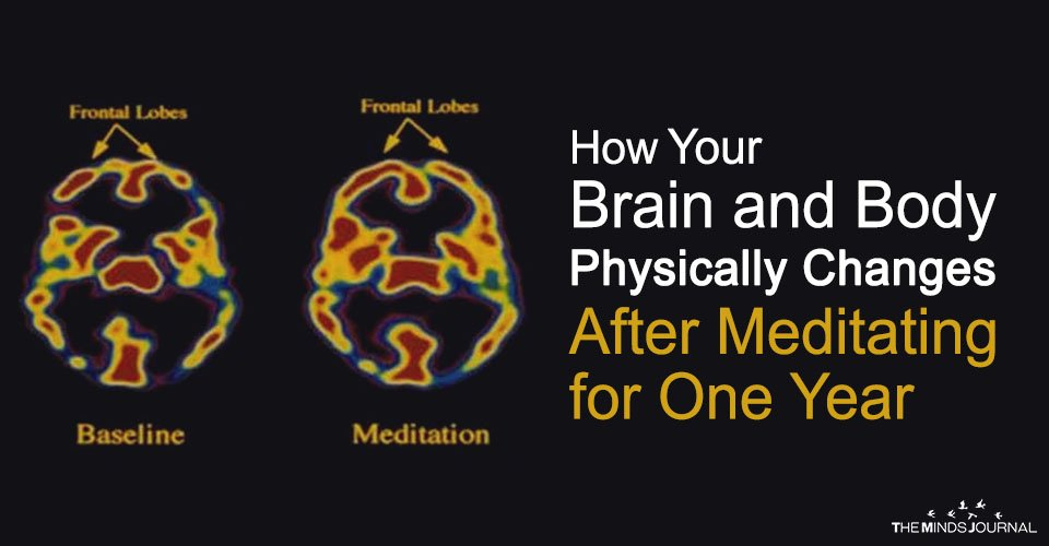 This is How Your Brain and Body Physically Changes After Meditating for One Year