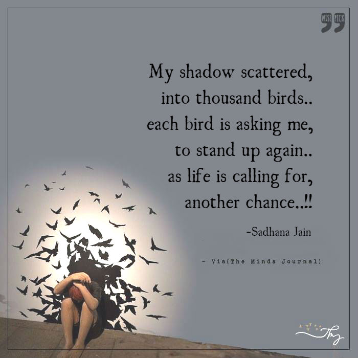 shadow-scattered
