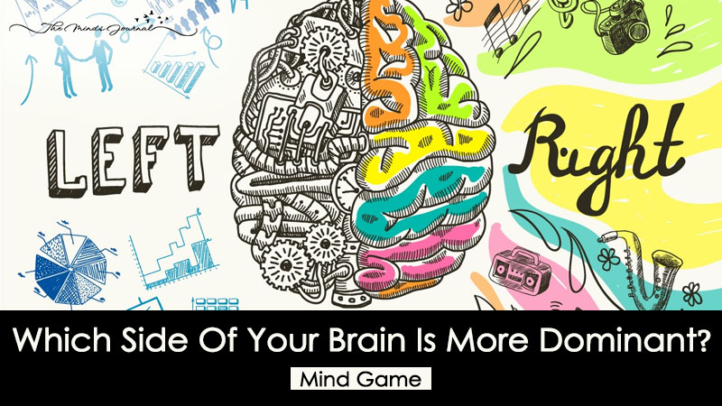 Which Side Of Your Brain Is More Dominant