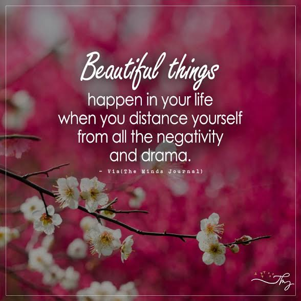 Beautiful things happen in your life when you distance yourself from all the negativity and drama.