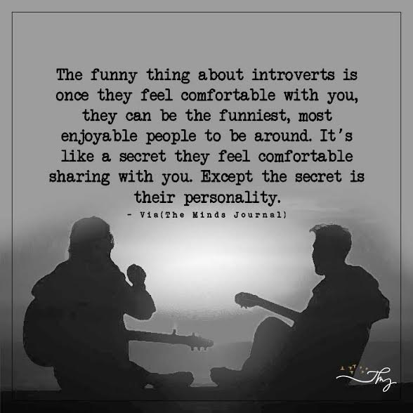 The funny thing about introverts