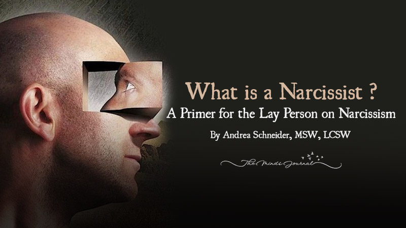 What is a Narcissist ? A Primer for the Lay Person on Narcissism