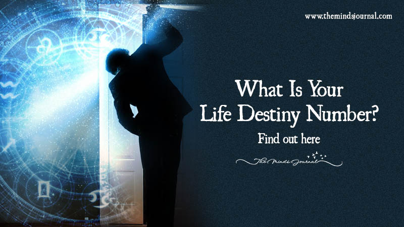What Is Your Life Destiny Number?