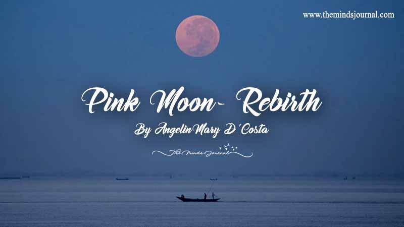 Pink Moon - Rebirth
